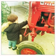 Yesterday, Das Big Boy played with the tractors at Volante Farms, one of his favorite things to do.