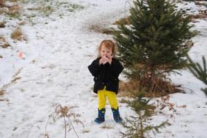 Little Liebchen eats snow.