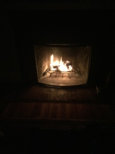 "We planned to appreciate the early bedtime afforded to by daylight savings time relaxing in front of this fire. Which we did, I guess, except we had to keep running upstairs to foist DBB back into bed. After one trip to the potty, I uttered the line, ""Your peeing is not an excuse for playtime."""
