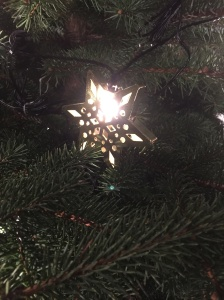 Lo, our funny little ornament is a Star of David! Huzzah for the interfaith tree!